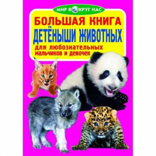 Книга большая Мир вокруг нас 22574 Украина на русском языке